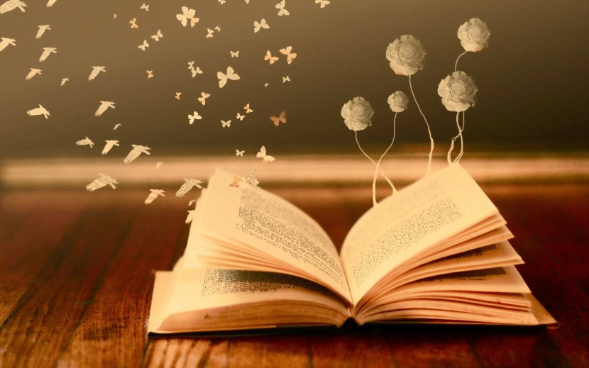 Huellas en libros de segunda mano