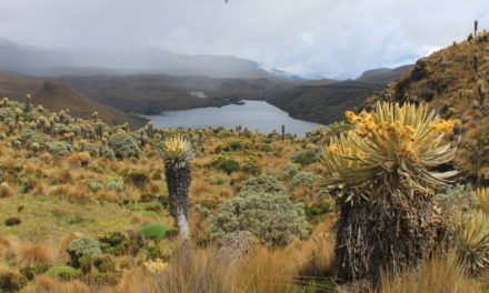 Laguna del Otún